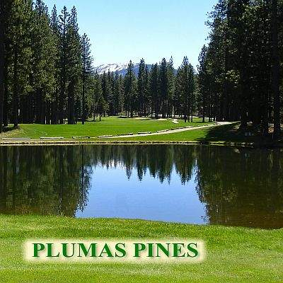 Plums Pines Sign-R